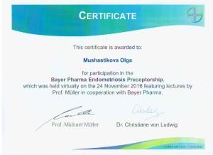 Bayer-2016